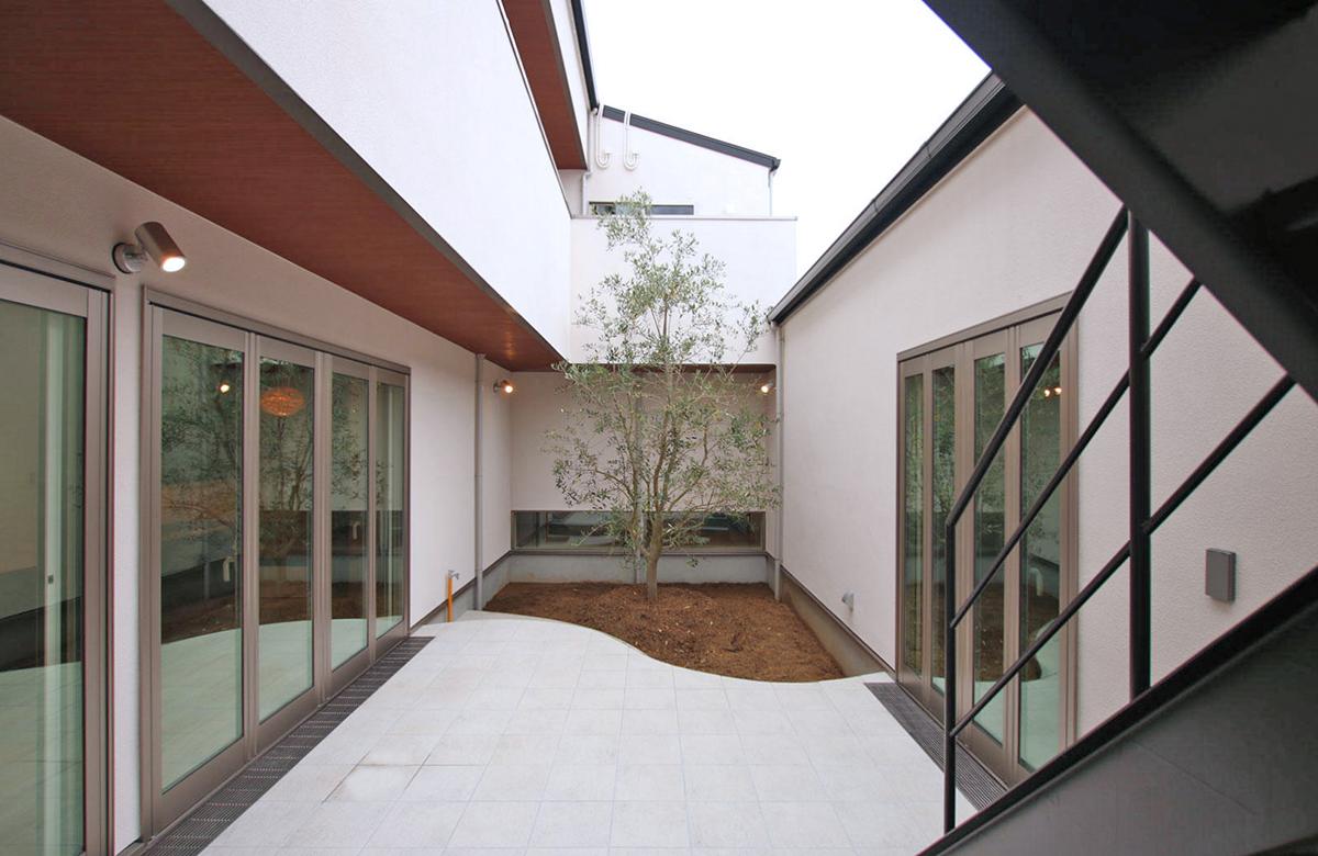 シンボルツリーを望む、内に開かれた中庭